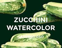 Zucchini watercolor illustrations