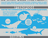 Ocean Acidification Infographic