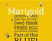 Marigold Typeface