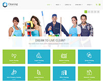 PE Cleaning Company Wordpress theme