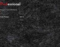 Professional Portfolio_BH + ASGG