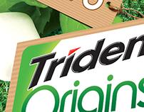 Trident Origins POS