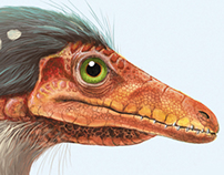 Personal work: Compsognathus