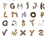 Dog Alphabet