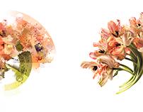 Giles Revell + Conceptual Color Palettes
