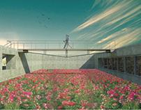 """Casa Del Fiore : """" Ciclo di vita dei fiori """""""