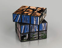 WWF: Rubik's Cube