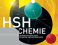HSH CHEMIE: THE AGENDA NOTES