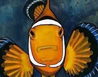 Fish Illustrations