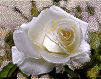 Enameled Rose