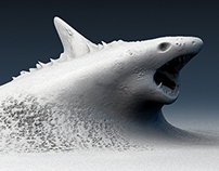 sidewalk shark
