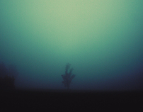 The Fog Vol. 2
