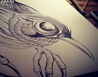 Blue Bird 藍鳥