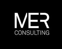 MER Cunsulting web