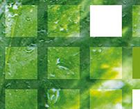 Rick Smits Total Green Brochure & Website