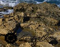 Sea Coast Photography