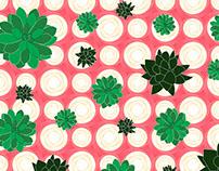 #Plants on Pink