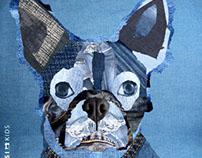 Denim Dogs 2012