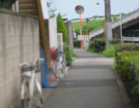 Riverbank of Tokyo