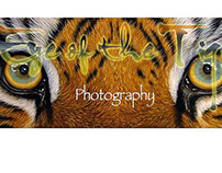 Eye of the Tiger Logo