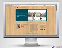 Diseño Web Lic. Silvia I. López Senés