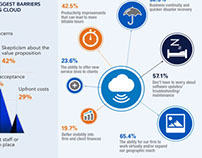 CPA2Biz: Infographics