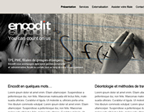 Logotype and web design for a chartered accountant