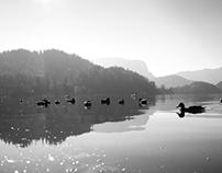 Bled :: Slovenia