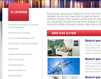 Landro Elektro: Website Design Concept