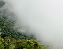 Experiencia paisajera (Landscape experience)