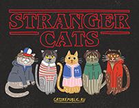 Stranger Cats