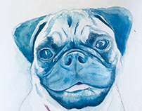 Dog Painting Commissions