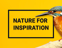 "Design Studio ""A. Nature"""