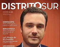 Revista Distrito Sur - Número 08, Noviembre 2017