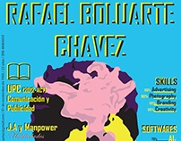 CV RAFAEL BOLUARTE CHAVEZ