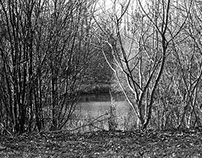 Photography-B&W-Landscape 2