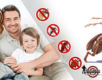 Steps to Choosing a Exterminator