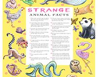 Strange Animal Facts