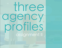 Ad Agency Profile Research