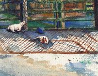 @Queens Zoo - part 02