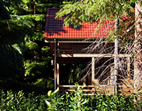 Forest House 3Ds Max_Corona render_Photoshop