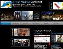 LR Consultant - Site Web