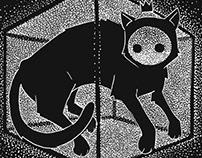 Schrödinger`s Cat
