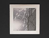 "BETWEEN WAKEFULNESS AND SLEEP ""Circle of time"" EP"