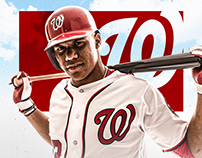 Washington Nationals Internship