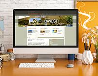 PRIMARIA BANESTI - WEB Design (since 2001)