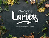 Larries Font (free for personal use)