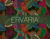 Estampa Ervaria - Out/Inv 2021 - Garage