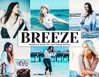 Free Breeze Mobile & Desktop Lightroom Preset