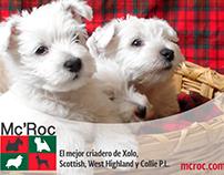 Vídeos promocionales · Criadero de perros MC'ROC